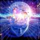 Online | Brain Builders